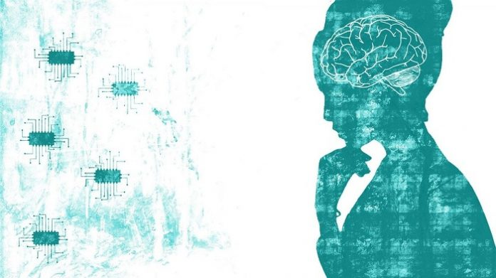 Modeling the Human Brain with Machine Learning